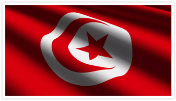 Simple Tax Guide for Americansin Tunisia